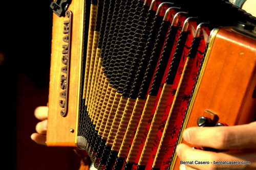 A picture of a real world accordion